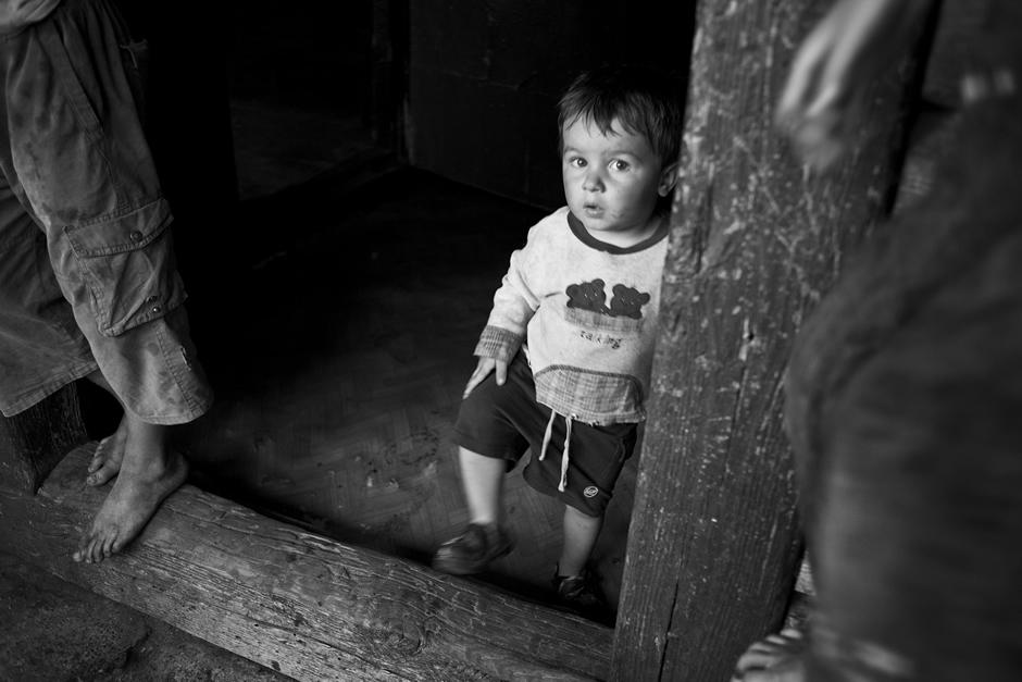 Mažiausias iš mažųjų. © Tadas Kazakevičius © Darius Chmieliauskas