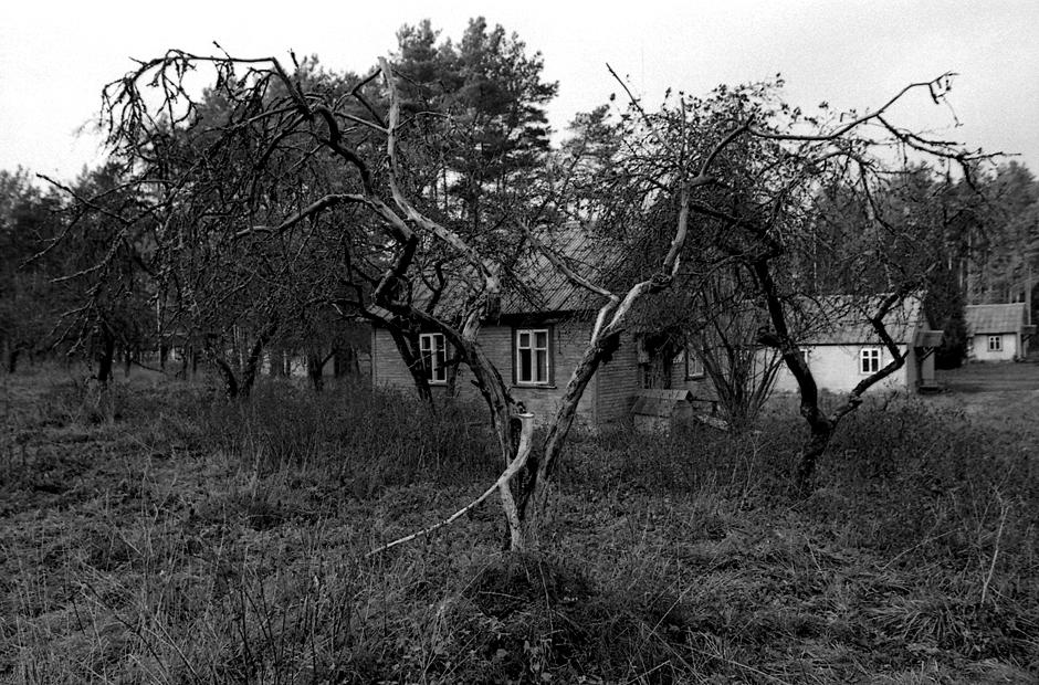 Daugiau nei metus Janas gyveno šiame pastate, kuriame kažkada buvo įsikūrusi pionierių stovyklos administracija. © Darius Chmieliauskas