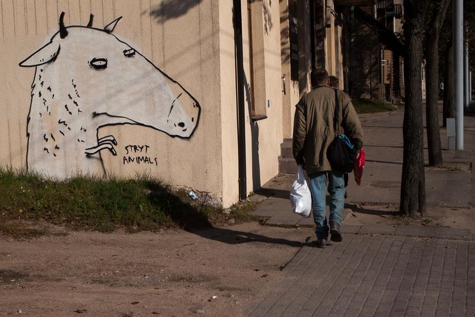 Pakeliui į Kalvarijų turgų. © Darius Chmieliauskas